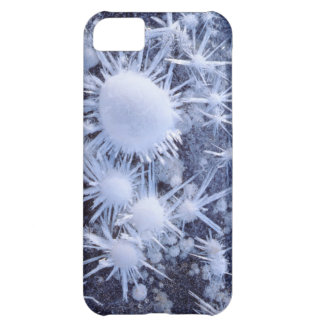 Ice crystals in the Sierra iPhone 5C Case