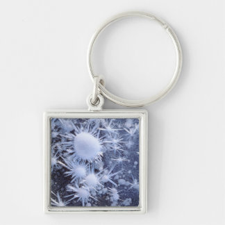 Ice crystals in the Sierra Silver-Colored Square Key Ring