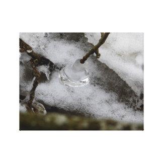 ice drop canvas print