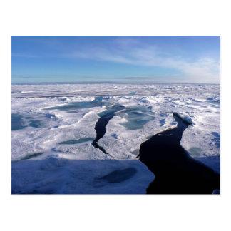 Ice fields in the Arctic Ocean Postcards