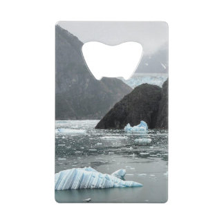Ice in Tracy Arm Fjord Bottle Opener