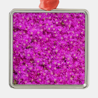 Ice Plant Ornaments