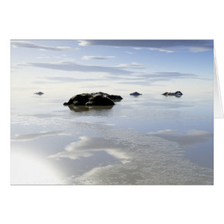 ice reflections greeting card