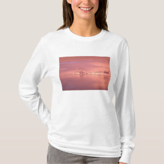 Ice, Snow, Icebergs in the channels along the T-Shirt