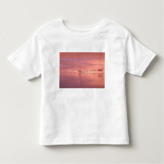 Ice, Snow, Icebergs in the channels along the Toddler T-Shirt