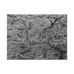 Ice Storm Gallery Wrap Canvas