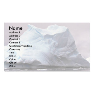Iceberg, Antarctica Double-Sided Standard Business Cards (Pack Of 100)