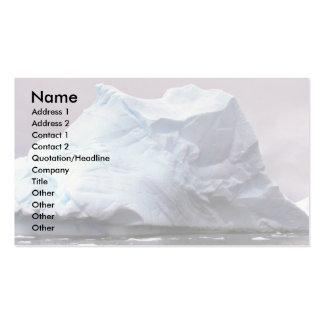 Iceberg, Antarctica Pack Of Standard Business Cards
