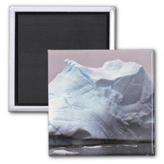 Iceberg, Antarctica Refrigerator Magnets