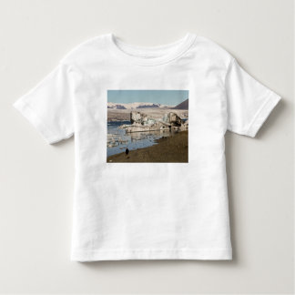 Iceberg formations 2 toddler T-Shirt