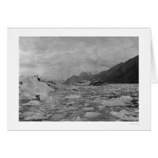 Iceberg Reid Inlet 1908 Greeting Cards