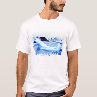 Icebergs at Jokulsarlon Lagoon T-Shirt