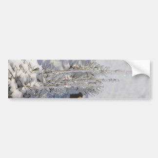 Iced fir tree with snow bumper sticker