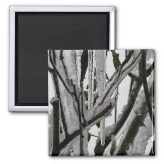 Iced Rose Branches Refrigerator Magnet