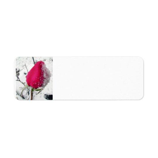 Iced Rose Return Address Label