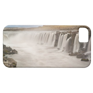 Iceland, Jokulsargljufur National Park. View of iPhone 5 Covers