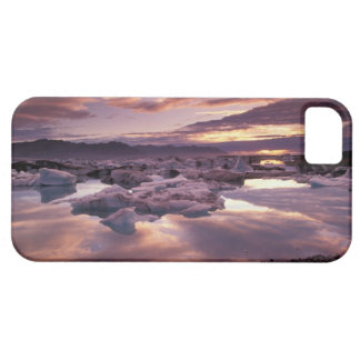 Iceland, Jokulsarlon Lagoon, Landscape iPhone 5 Covers