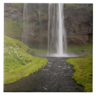 Iceland. People on trail behind Seljalandsfoss Tile