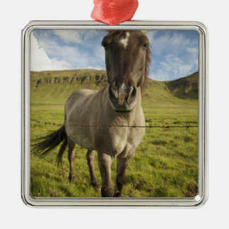 Iceland, Reykjavik. Frontal view of Icelandic Christmas Ornament