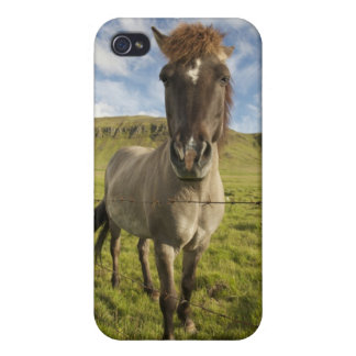 Iceland, Reykjavik. Frontal view of Icelandic iPhone 4 Covers