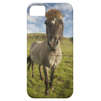 Iceland, Reykjavik. Frontal view of Icelandic iPhone 5 Case