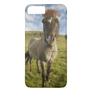 Iceland, Reykjavik. Frontal view of Icelandic iPhone 8 Plus/7 Plus Case