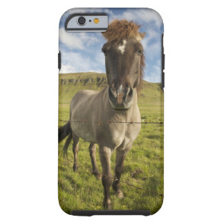 Iceland, Reykjavik. Frontal view of Icelandic Tough iPhone 6 Case