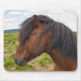 Iceland. South Region. Selfoss. Icelandic horse 1 Mouse Mat