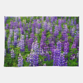 Iceland. Vik i Myrdal. Field of Lupines Tea Towels