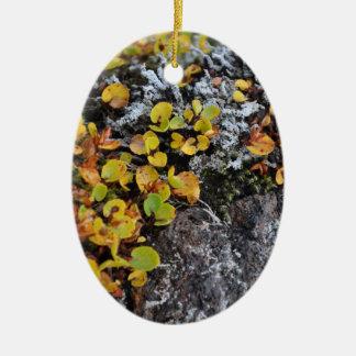 Icelandic Ground Cover Ornament