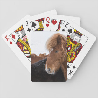 Icelandic Horse Among the Herd Playing Cards
