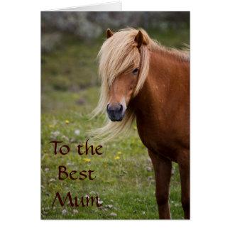Icelandic Horse Best Mum Greeting Card