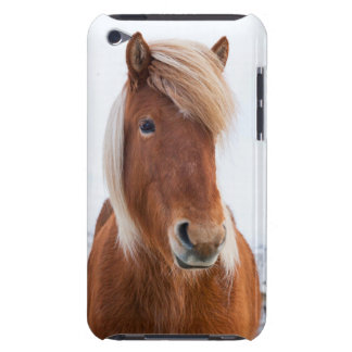 Icelandic Horse during winter  2 Barely There iPod Case