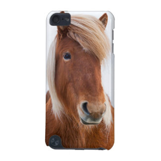 Icelandic Horse during winter  2 iPod Touch 5G Cover