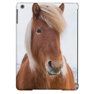 Icelandic Horse during winter  2 Cover For iPad Air