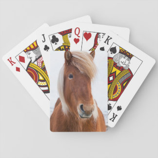 Icelandic Horse during winter  2 Playing Cards