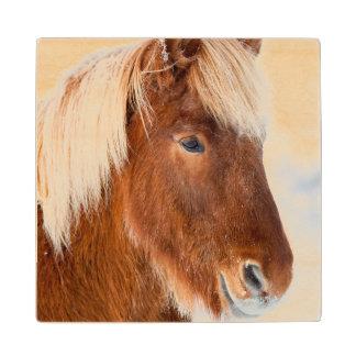 Icelandic Horse during winter near lake Myvatn Wood Coaster