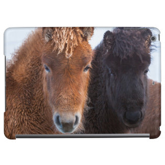 Icelandic Horse during winter on Iceland 2 iPad Air Case