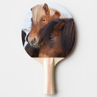 Icelandic Horse during winter on Iceland 3 Ping Pong Paddle