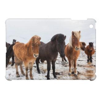 Icelandic Horse during winter on Iceland iPad Mini Cases