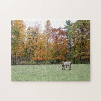 Icelandic Horse in Autumn Puzzle