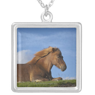 Icelandic horse resting and sky silver plated necklace