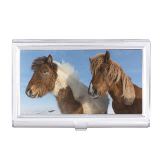 Icelandic horses business card holder