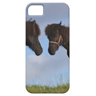 Icelandic horses facing each other iPhone 5 cover