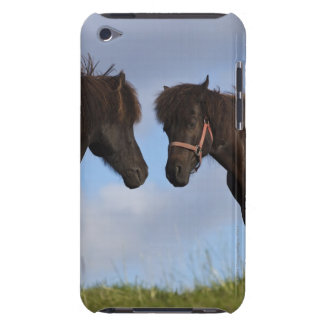 Icelandic horses facing each other iPod touch Case-Mate case