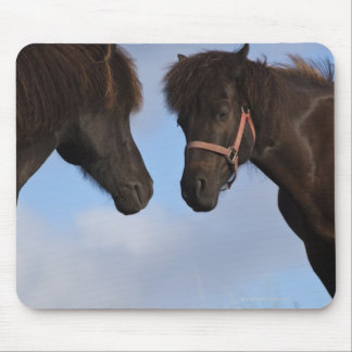 Icelandic horses facing each other mouse mat