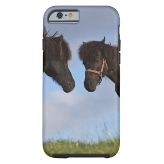 Icelandic horses facing each other tough iPhone 6 case