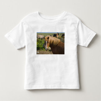 Icelandic Horses in northeastern Iceland. T-shirt