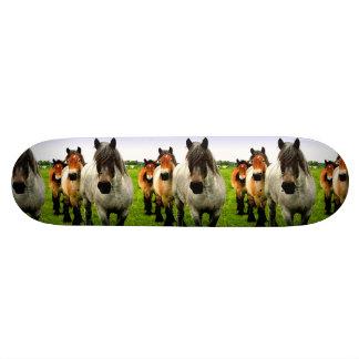 Icelandic Ponies 19.7 Cm Skateboard Deck