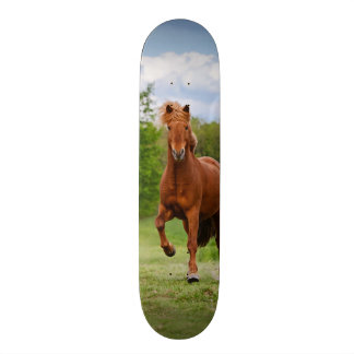 Icelandic Pony Runs Tölt Funny Photo Horse Lovers 21.6 Cm Skateboard Deck